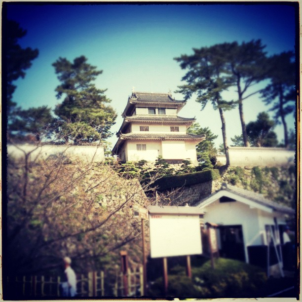 Shimabara - from Instagram