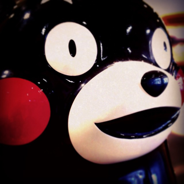 kuma - from Instagram