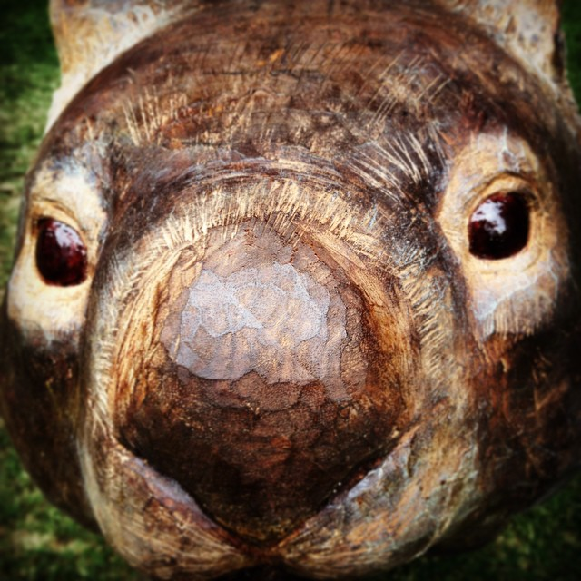 muzzle - from Instagram