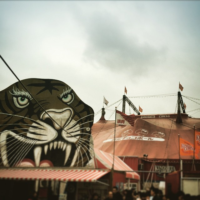 circus - from Instagram