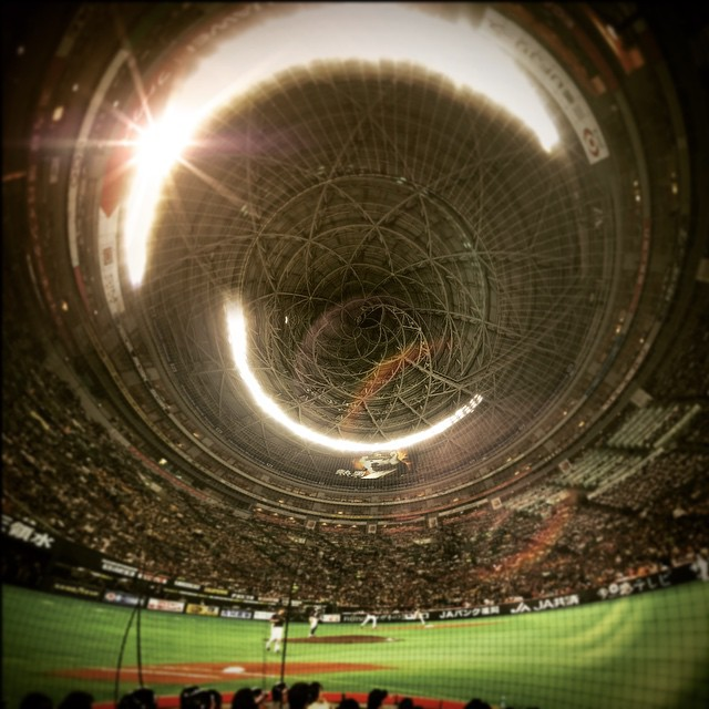 Y Dome - from Instagram